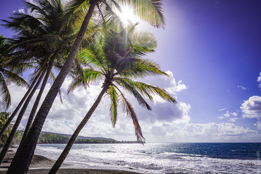 La plage de Grand Anse à Trois Rivière , Guadeloupe