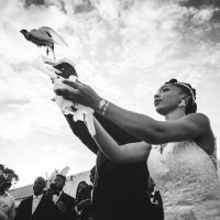 une colombe qui s'envole des mains des mariés